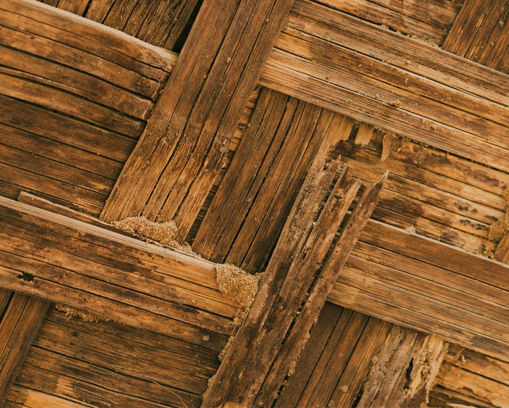 tratamiento madera xilofagos